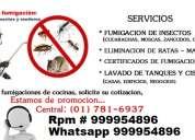 Servicio de fumigaciones contra cucarachas