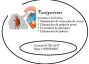 Servicio de fumigacion, fumigacion de pulga de paloma, chuchuy de paloma