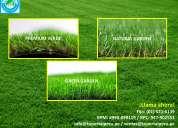 Gran oferta de grass decorativo rpm: #943608641