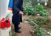 Ae.empresa de fumigacion fumigaciones - extintores para pulgas garrapatas  