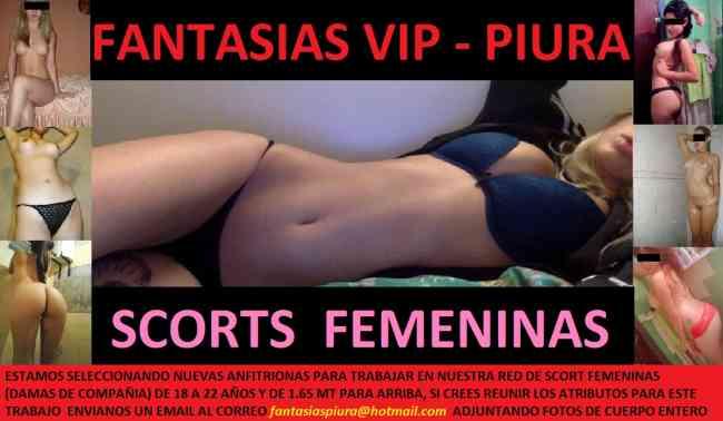 scort wasap Club nocturno
