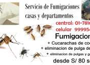 Fumigaciones de casas, eliminacion de pulga de perro, exterminio de rata