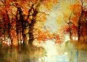Decore sus paredes con bellas pinturas hechas por artistas de bellas artes.