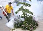 Fumigacion desratizacion garantizado 7968942 - 975255535
