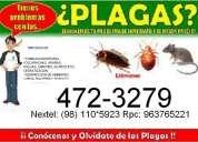 Fumigacion para cucarachas pulgas garrapatas en la molina surco san borja