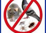 FumigaciÓn efectiva contra insectos - control y monitoreo lima 792-4646