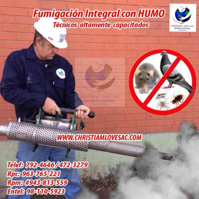fumigamos todo tipo de insectos con humo - Tel: 792-4646