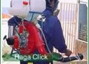 Fumigacion chinches ,acaros pulgas  7968942 - 975255535