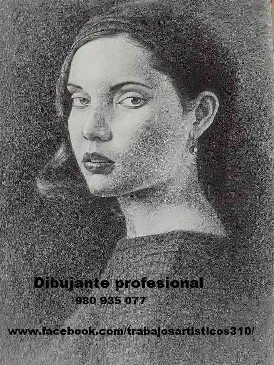 Dibujante profesional de retratos.