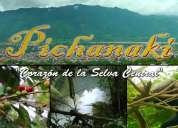Transporte de carga hacia pichanaki