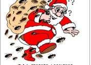 Llego el verano fumigue ahora 492-5106 oferta navideÑa