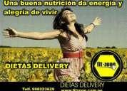 Solo dietas delivery en lima peru fitzone comida saludable a domiciliolima peru san isidro