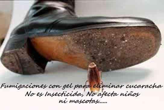 GEL, PASTA, CREMA PARA ELIMINAR CUCARACHAS DE COCINA 792-4646