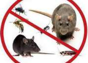 Fumigacion de hongos,bacterias,plagas,desinfecciones lima eko planeet
