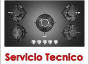 TÉcnicos de cocinas, hornos, campanas y mas _sole_ contamos con tÉcnicos de primera