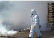 Fumigaciones casas con pulgas garrapatas  7968942 - 989957783