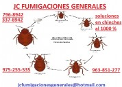 Fumigaciones de insectos garrapatas pulgas   3373968 .  977678434