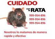 Eliminacion de rata, matamos rata, exterminio de rata 999954896