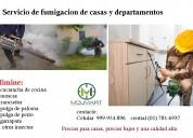 servicio de fumigaciones de casas 999954896