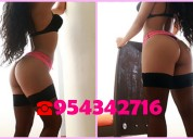Ardiente acompañante independiente > chiclayo  > 954342716