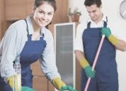 Servicios de manenimiento y limpieza de casas oficinas locales