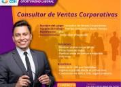Consultor de ventas corporativas