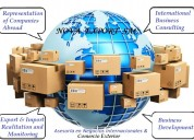 Outsourcing de comercio exterior - asesoría y desarrollo integral de exportaciones & importacio