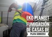 Eko planeet fumigaciones antiasmaticas y antialergicas