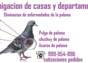 Fumigación de pulgas de paloma
