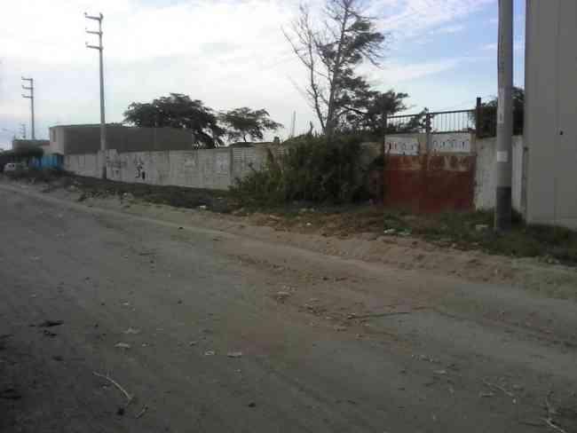 VENDO TERRENO DE 7000M2 CERCADO EN LAMBAYEQUE.