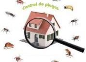 exterminacion de insectos en hogares, departamentosla molina-7921588 - 952751166