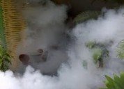 fumigacion con humo, nebulizacion, 7921588 - 9527