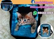 Cartera ,bolso con diseño de gato a s/.35