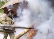 fumigaciones en general limpieza de tanque cister