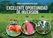 Fundos del perú - asesoría en la compra y venta de