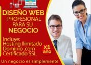 Diseño web profesional, para negocios y empresas