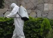 Fumigacion control insectos en todo el lima 920759