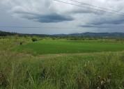 Vendo terreno en cacatachi de ocasion en san martín