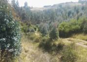 Vendo terreno entre cachimayo chinchero en cusco