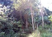 Terreno en la carretera iquitos - nauta
