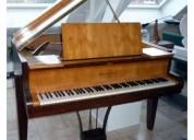 Profesor de piano y organo electronico a domicilio