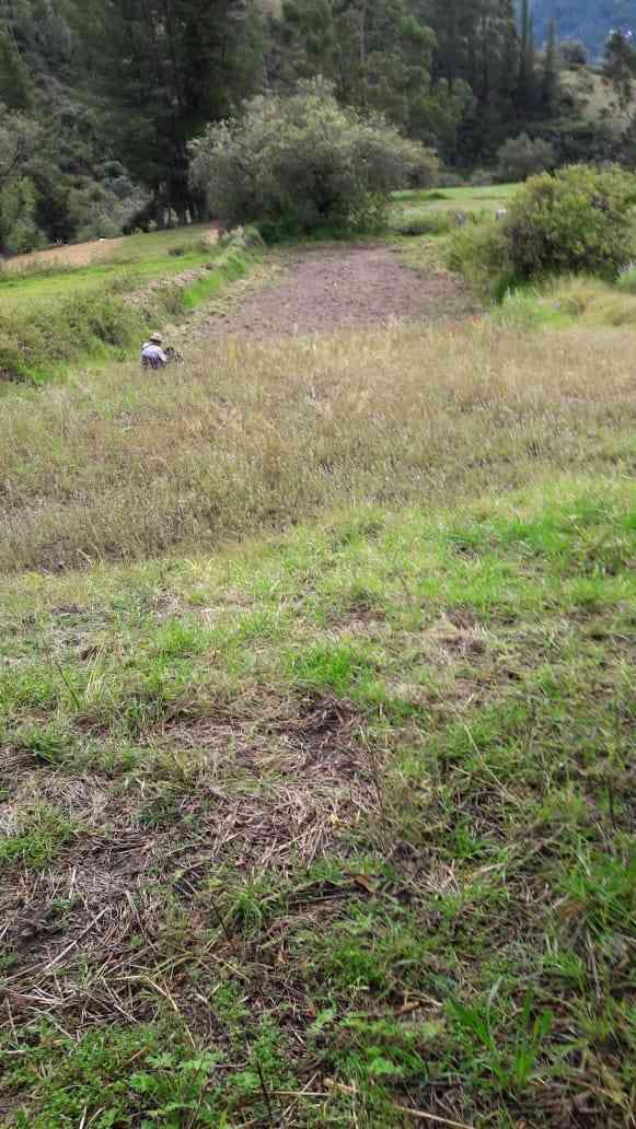 700 m2 de terreno agrícola marcac acceso pista