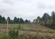 Venta terreno en mala 16,500 m² $42/m²