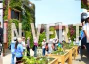 Taller de jardines verticales  16 de marzo del 201