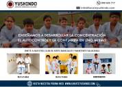 Karate yushindo – karate infantil – en miraflores
