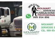 Certificado de fumigacion para camiones, fumigador