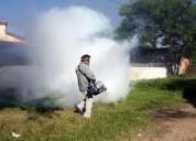 Fumigacion contra cucarachas y pulgas eko planeet