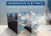Generadores de vapor eléctrico