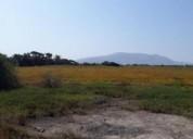 Vendo cañete terreno agrícola