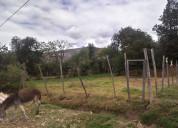 Venta de terreno en el distrito jesus cajamarca